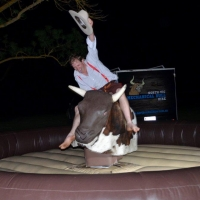 Tex the Bucking Bull